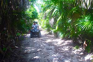 Venture the Jungle with this fun and exciting Cozumel ATV Excursion