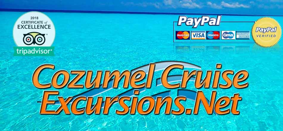 top cozumel excursions in cozumel for many years in a row
