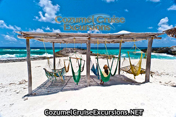 Discover Cozumel S Mesmerizing Reefs With Our Jeep Excursion