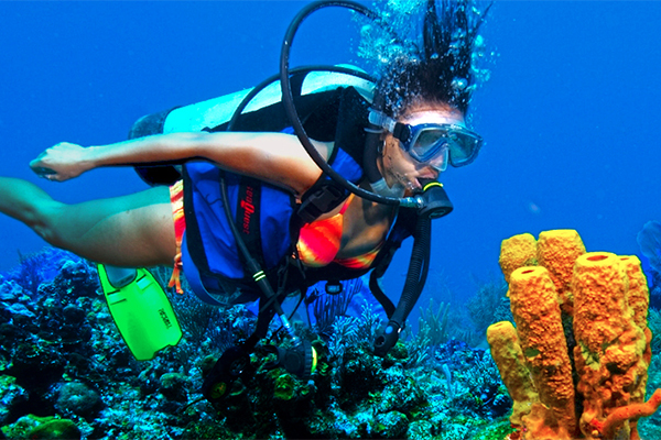 learn to dive in cozumel scuba diving lessons