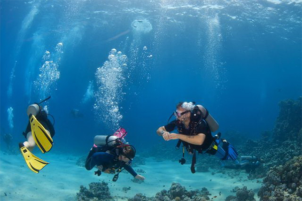 The best cozumel shore excursions save 40 off - Dive in scuba ...