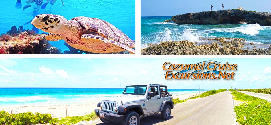 The Best Tours in Cozumel to get more out of your day in Cozumel