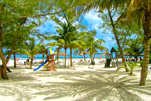 Plan Your Trip To Cozumel With Tours En