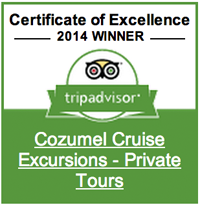 trip advisor reviews cozumel cruise excursions private tours trip advisor page